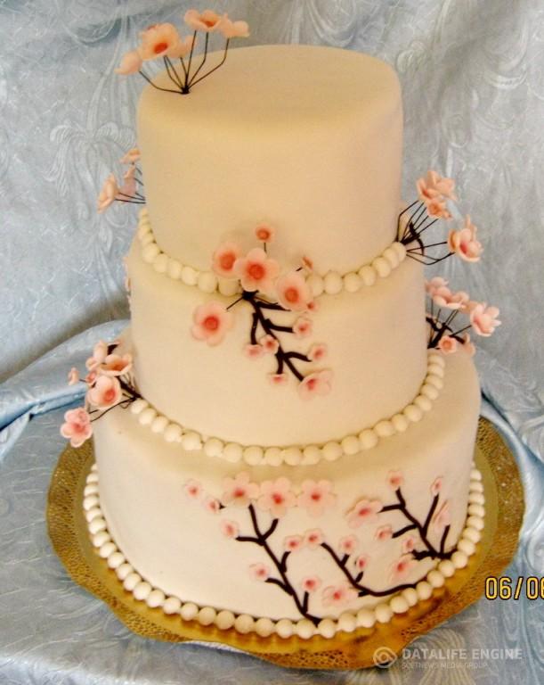 sbadebnie-torti-mnogo-yarus-89