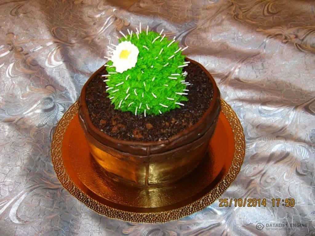 tort-cveti-00385