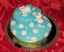 torti-malisham-novorozhdennim-183