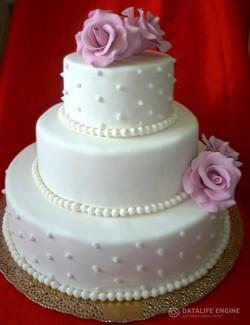 sbadebnie-torti-mnogo-yarus-231