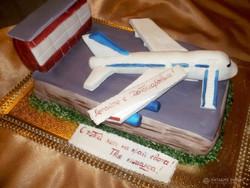 tort-samolet-raketa-00001
