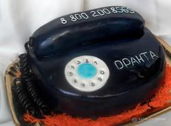 tort-tehnika-00013