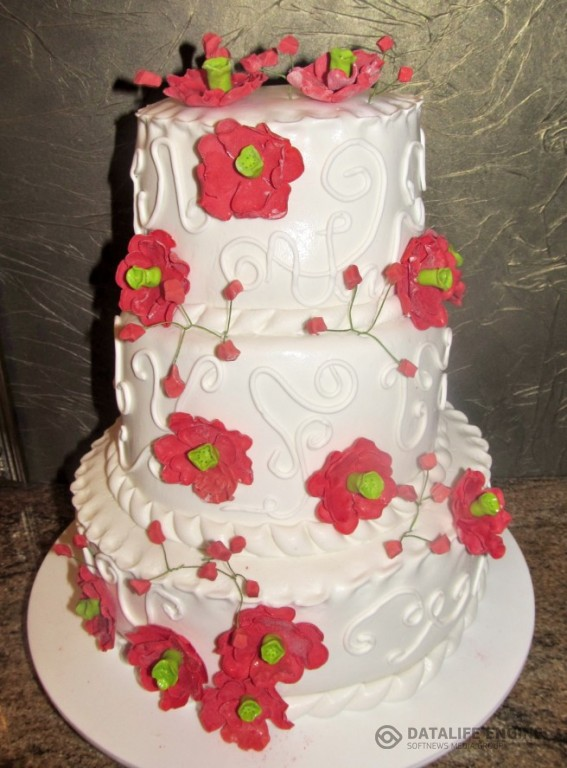 sbadebnie-torti-mnogo-yarus-204