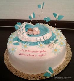 torti-malisham-novorozhdennim-315