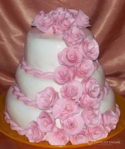sbadebnie-torti-mnogo-yarus-268