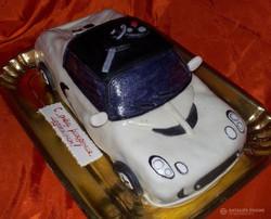 tort-avto-00163