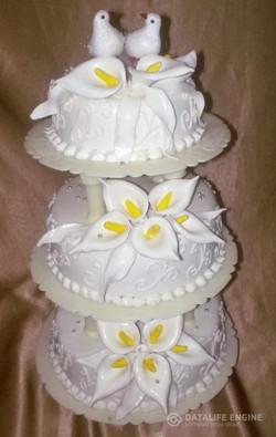sbadebnie-torti-mnogo-yarus-45