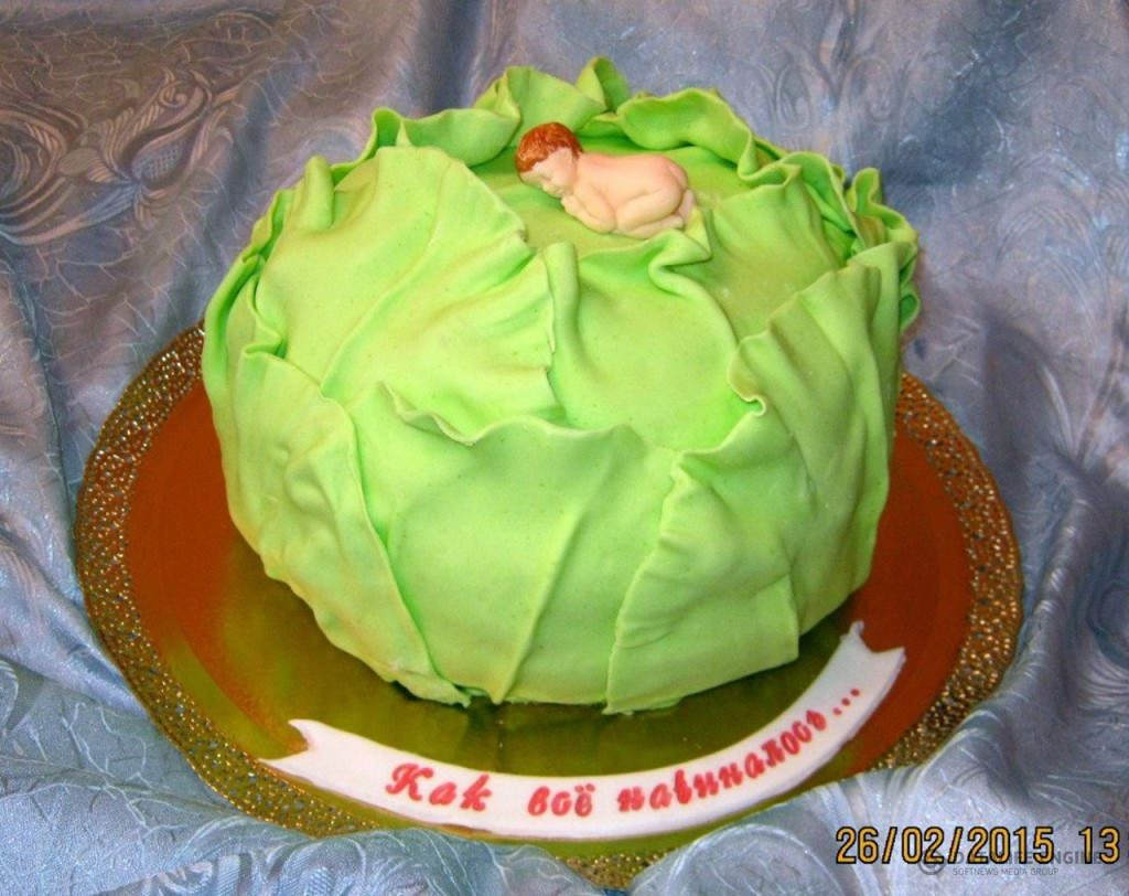 torti-malisham-novorozhdennim-94