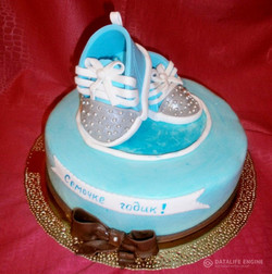 torti-malisham-novorozhdennim-112