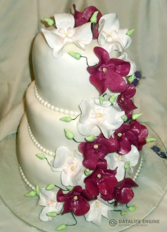 sbadebnie-torti-mnogo-yarus-209