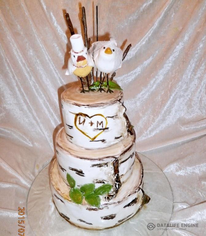 sbadebnie-torti-mnogo-yarus-284