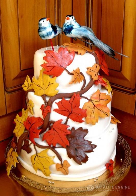 sbadebnie-torti-mnogo-yarus-262