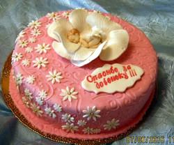 torti-malisham-novorozhdennim-364