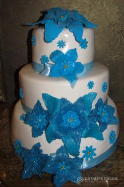 sbadebnie-torti-mnogo-yarus-206