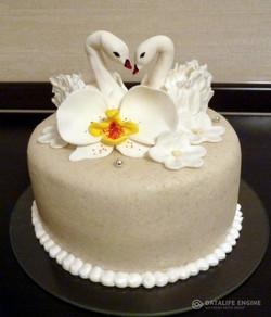 sbadebnie-torti-1-yarus-145
