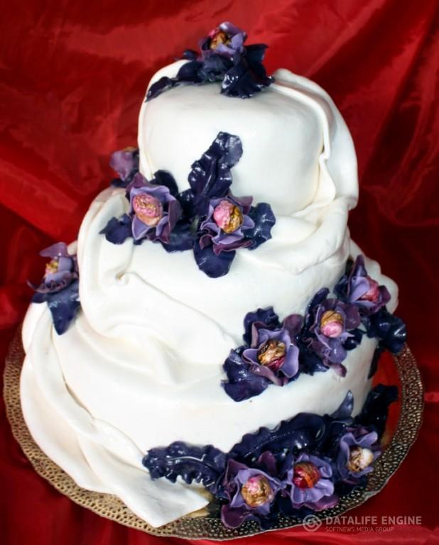 sbadebnie-torti-mnogo-yarus-165