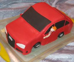 tort-avto-00113