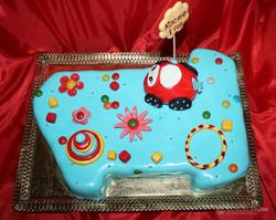 torti-malisham-novorozhdennim-214