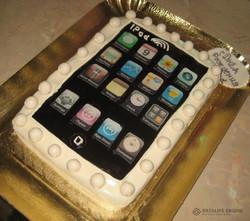 tort-tehnika-00008