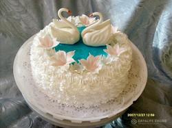 sbadebnie-torti-1-yarus-161