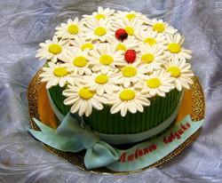 tort-cveti-00482