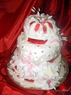 sbadebnie-torti-mnogo-yarus-221