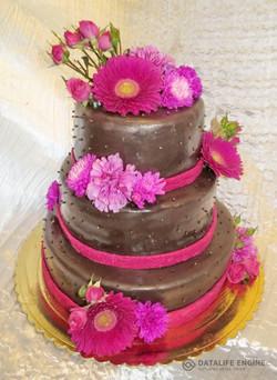 sbadebnie-torti-mnogo-yarus-134