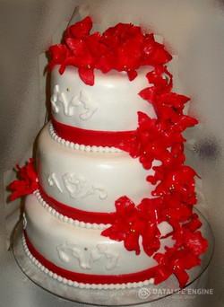 sbadebnie-torti-mnogo-yarus-256