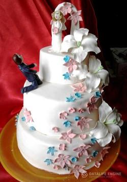 sbadebnie-torti-mnogo-yarus-88