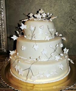 sbadebnie-torti-mnogo-yarus-109