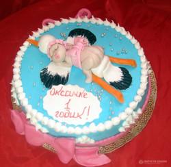 torti-malisham-novorozhdennim-239