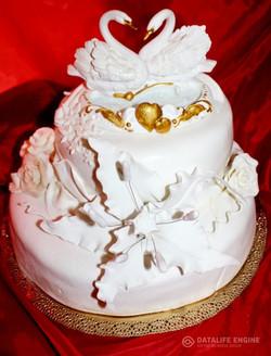 sbadebnie-torti-2-yarus-147