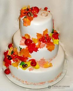 sbadebnie-torti-mnogo-yarus-31