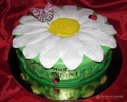 tort-cveti-00308