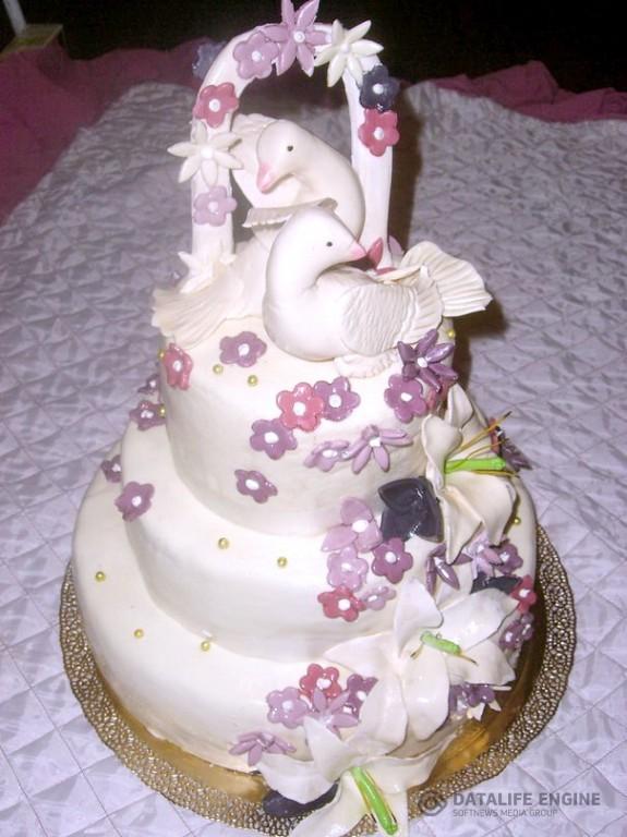 sbadebnie-torti-mnogo-yarus-239