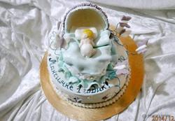torti-malisham-novorozhdennim-442