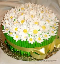 tort-cveti-00333