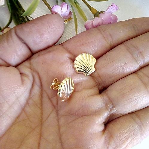 Brincos Pequenos Conchinhas