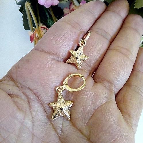 Brincos Pequenos Estrela
