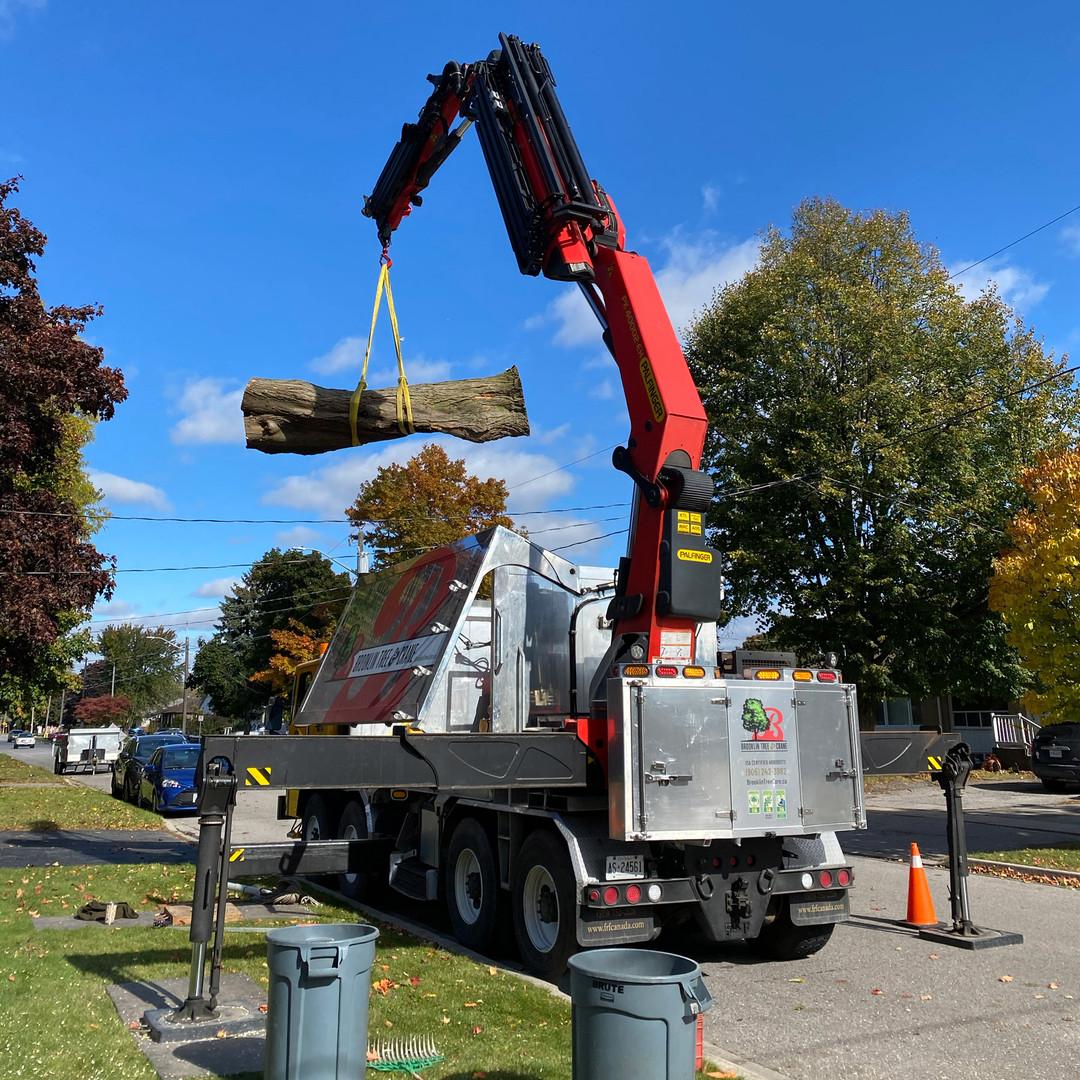 BTC-Removal-Oct-2020-Crane-IMG_7815.jpg