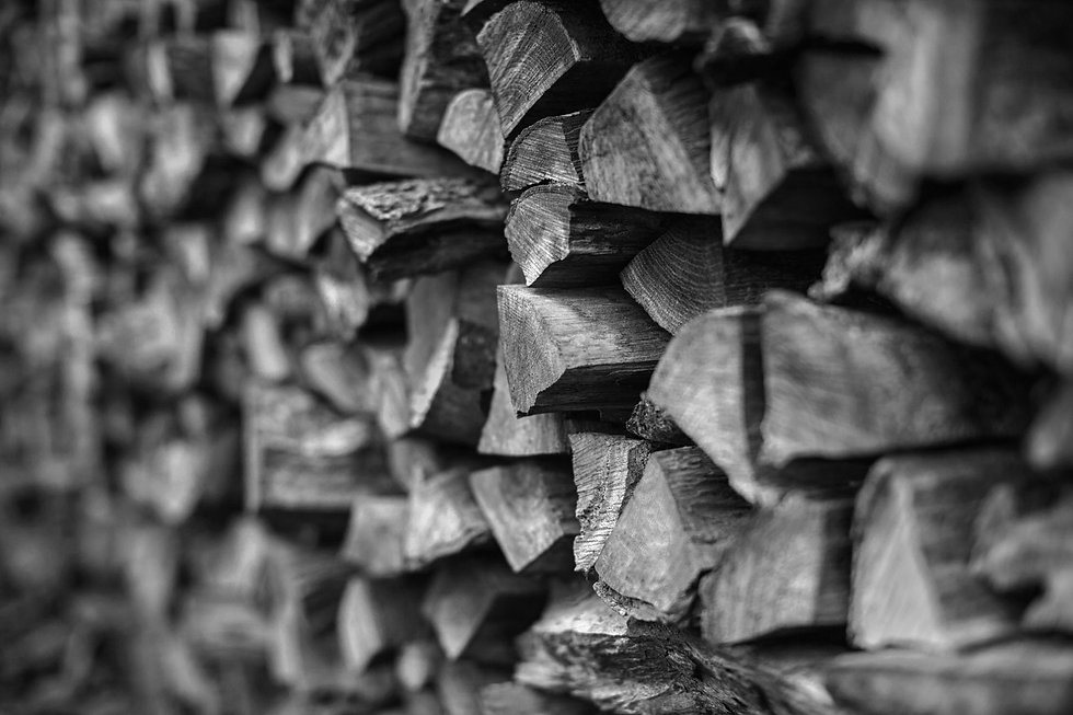 Dilts-Design-Wood-Pile-AdobeStock_961655