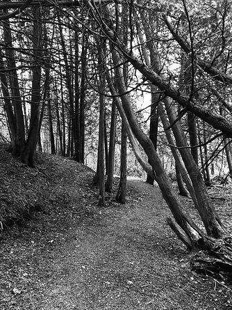 Uxbridge Ontario hiking trail
