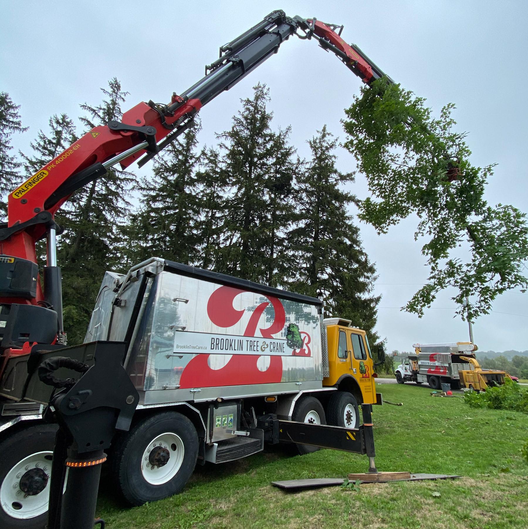 BTC-Crane-Bucket-14-30-40.jpg