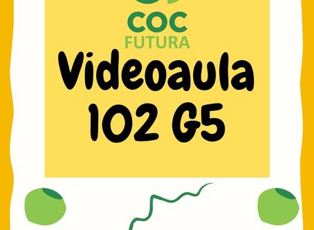 Videoaula 102 G5 Educação Infantil