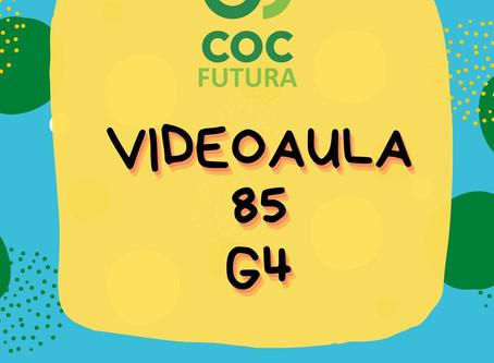 Videoaula 85 G4 Educação Infantil