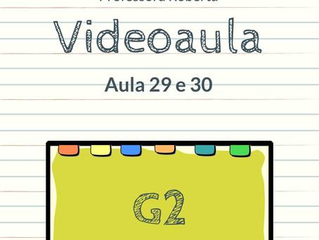 Videoaula 29 e 30 G2 Educação Infantil