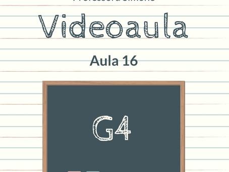 Videoaula  16 G4 Educação Infantil