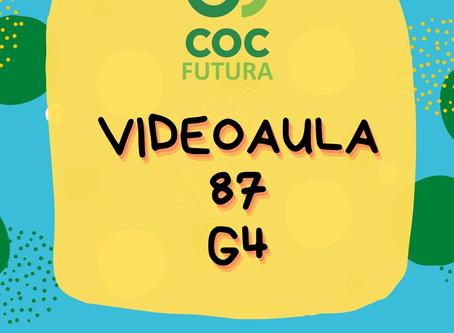 Videoaula 87 G4 Educação Infantil