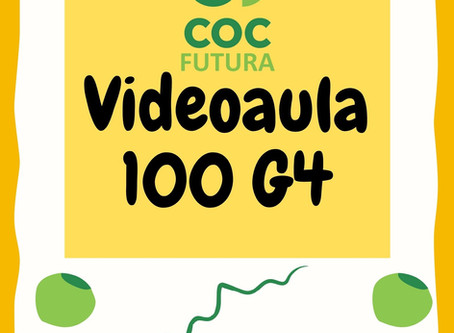Videoaula 100 G4 Educação Infantil