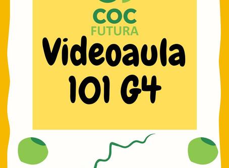 Videoaula 101 G4 Educação Infantil